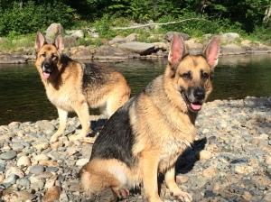 Inga & Sasha