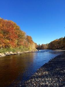 River in October