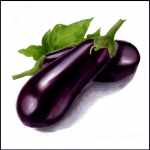 eggplant-final-w-txr1