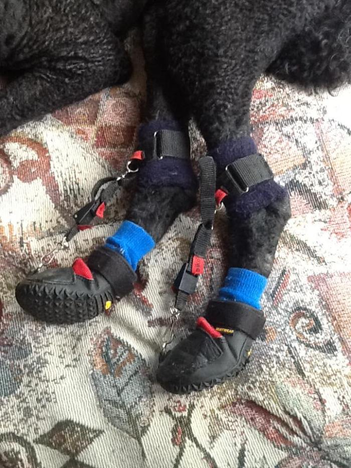 Ruffi Boot 3