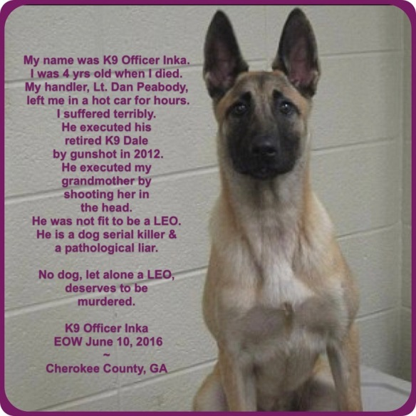 Daniel Peabody ~ Georgia Cop And Serial Dog Killer   A